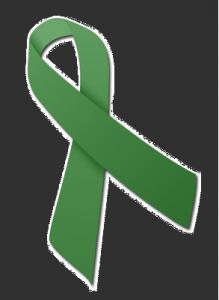 Brain Injury ribbon